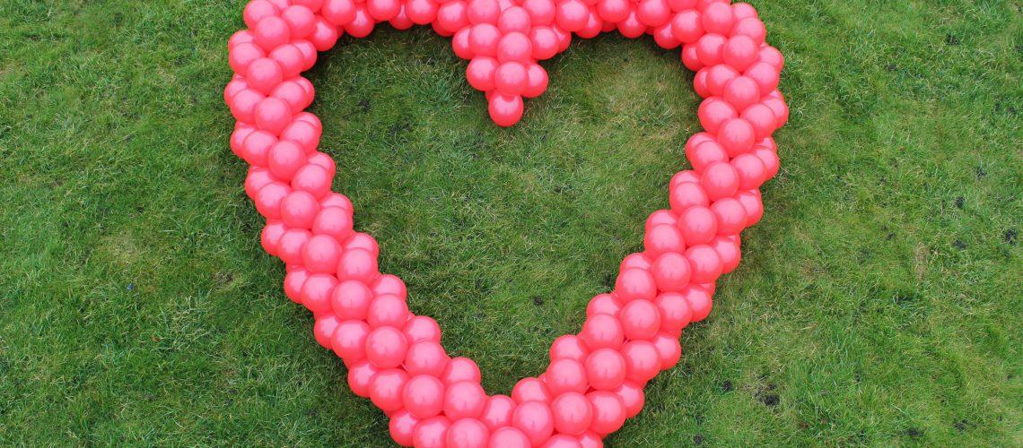 Ballonnenhart op gras 1